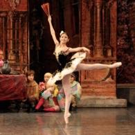 Дон Кихот Русский Имперский Балет (11)