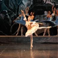 Дон Кихот Русский Имперский Балет (2)