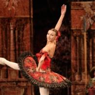 Дон Кихот Русский Имперский Балет (26)