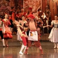 Дон Кихот Русский Имперский Балет (27)