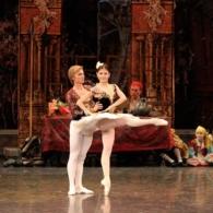 Дон Кихот Русский Имперский Балет (9)