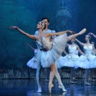Лебединое озеро Имперский Русский Балет (13)