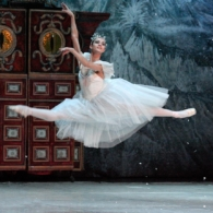 Щелкунчик -Русский Имперский Балет (18)