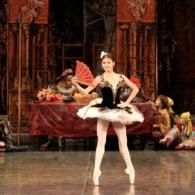Дон Кихот Русский Имперский Балет (12)