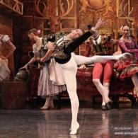 Дон Кихот Русский Имперский Балет (23)