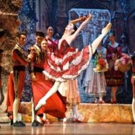 Дон Кихот Русский Имперский Балет (24)