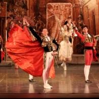 Дон Кихот Русский Имперский Балет (29)