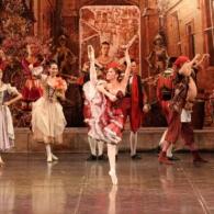 Дон Кихот Русский Имперский Балет (32)