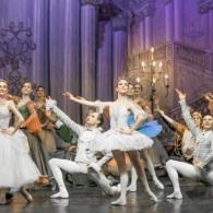 Спящая Красавица Импкрский Русский Балет 2 (27)